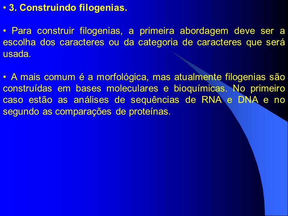 3. Construindo filogenias.