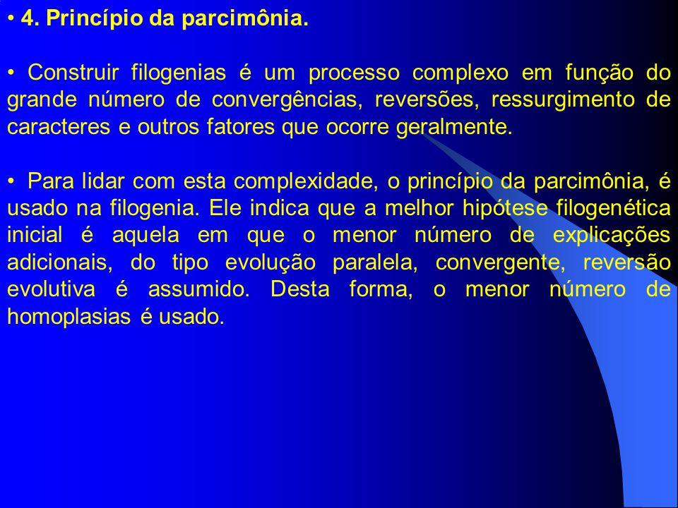 4. Princípio da parcimônia.