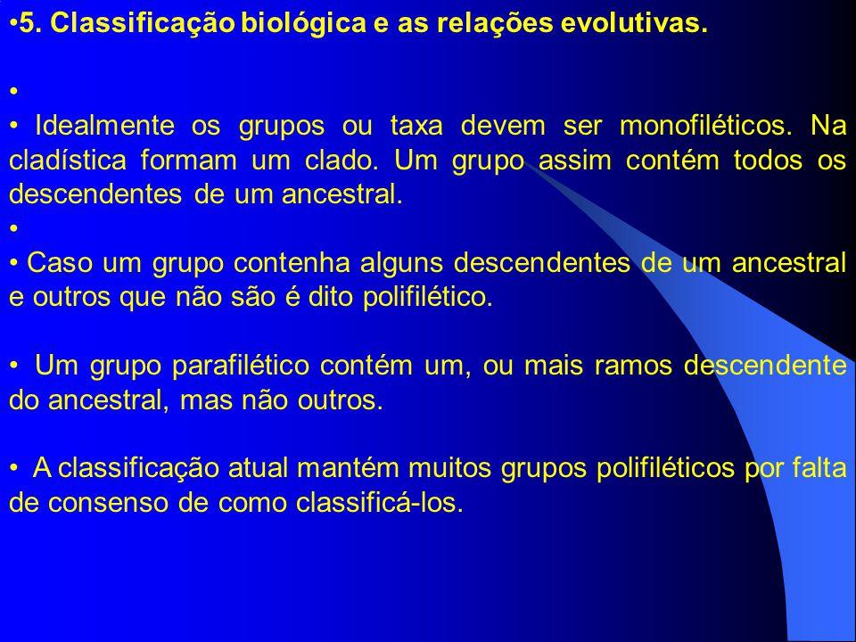 5. Classificação biológica e as relações evolutivas.