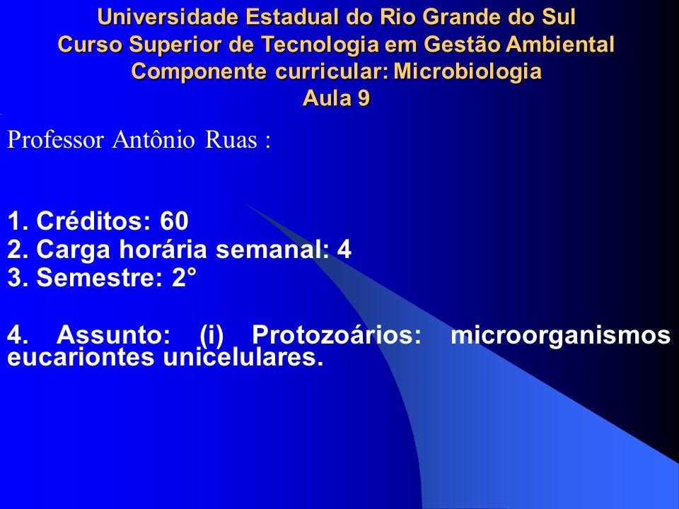 Professor Antônio Ruas :