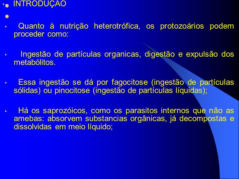 Quanto à nutrição heterotrófica, os protozoários podem proceder como: