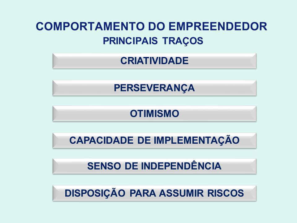 COMPORTAMENTO DO EMPREENDEDOR PRINCIPAIS TRAÇOS