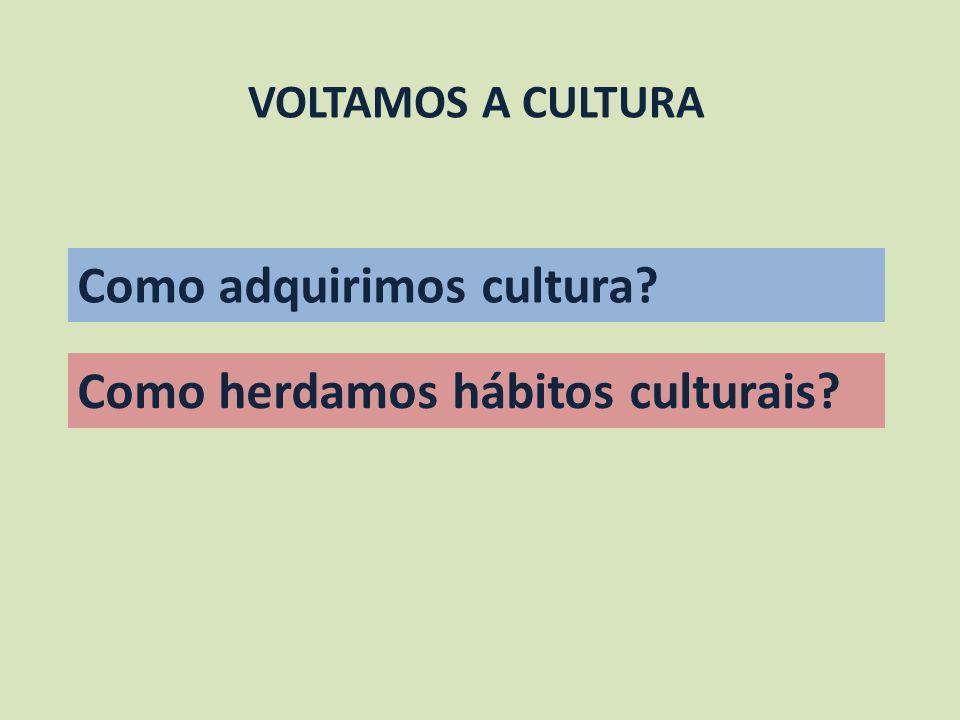 Como adquirimos cultura