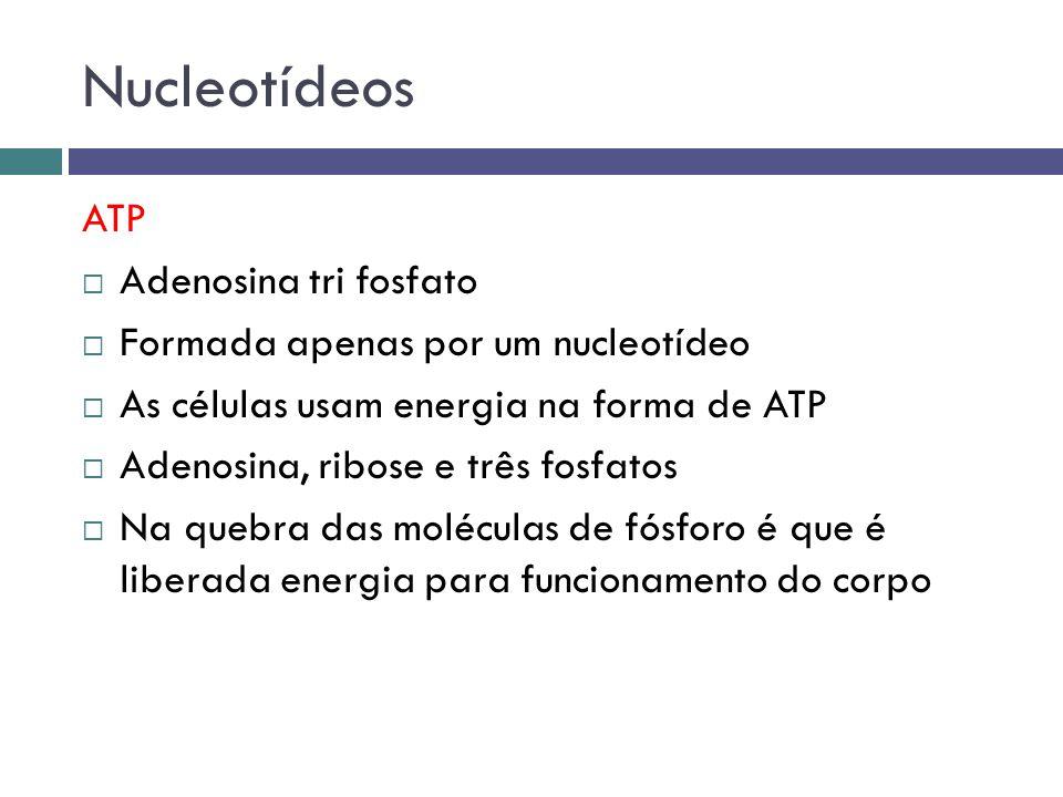 Nucleotídeos ATP Adenosina tri fosfato