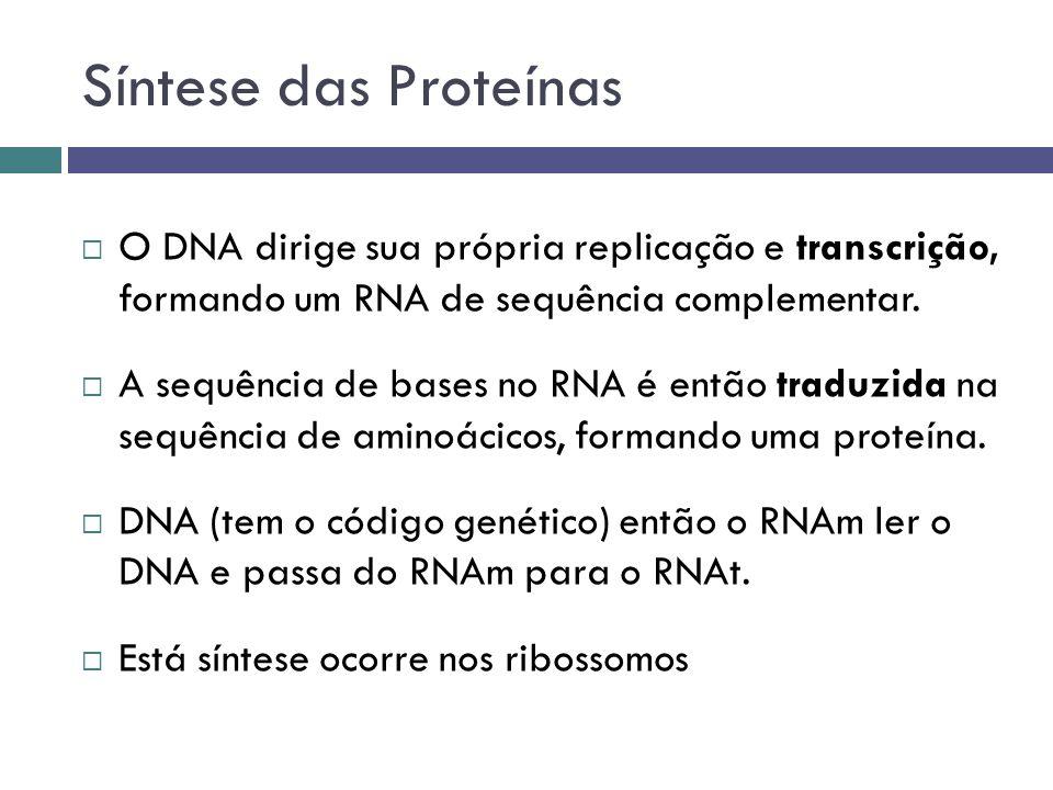 Síntese das Proteínas O DNA dirige sua própria replicação e transcrição, formando um RNA de sequência complementar.