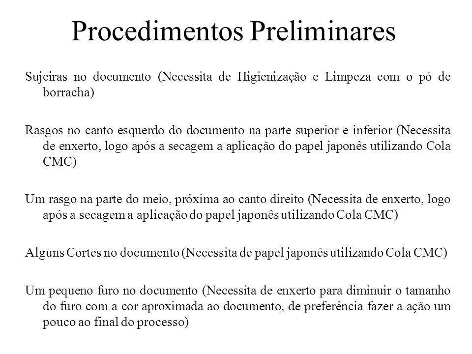 Procedimentos Preliminares