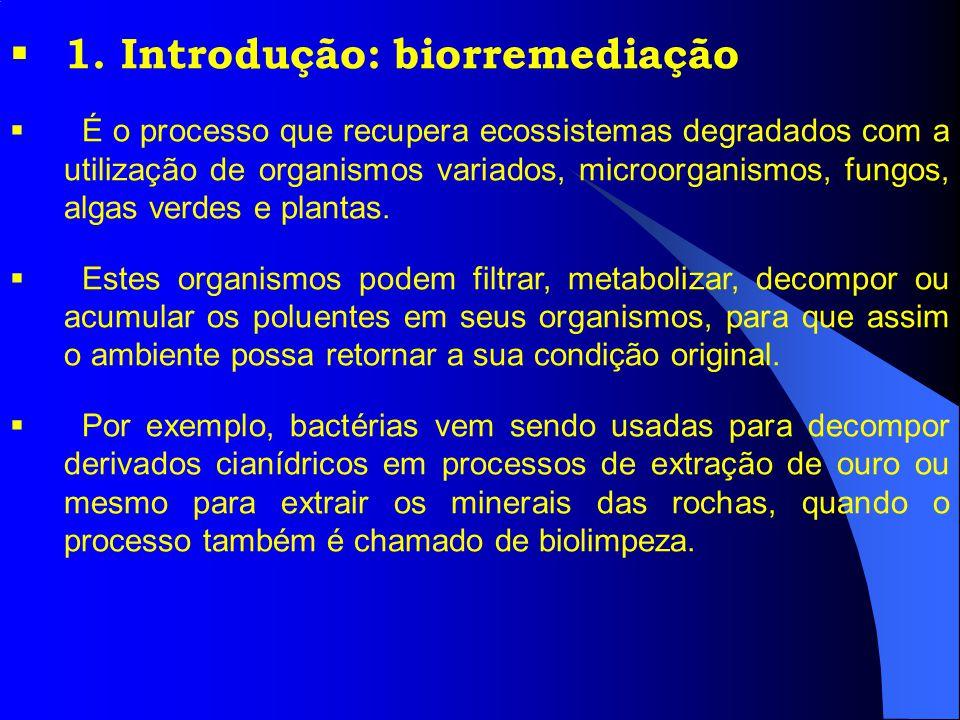 1. Introdução: biorremediação
