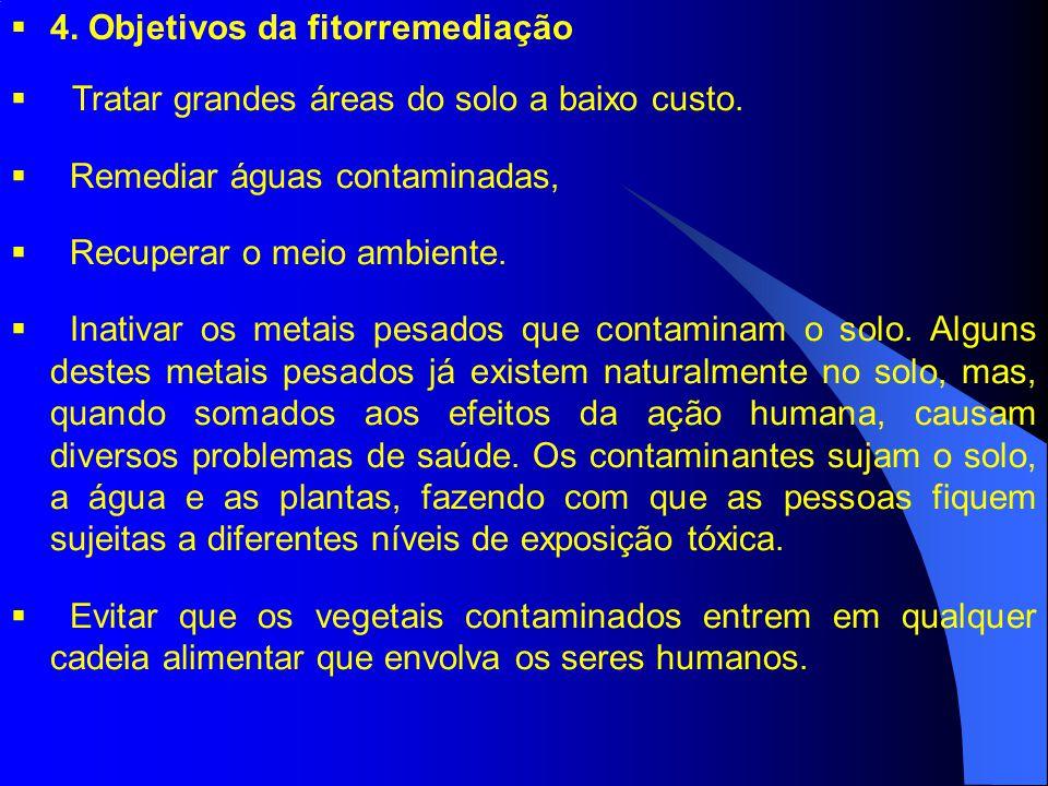 4. Objetivos da fitorremediação