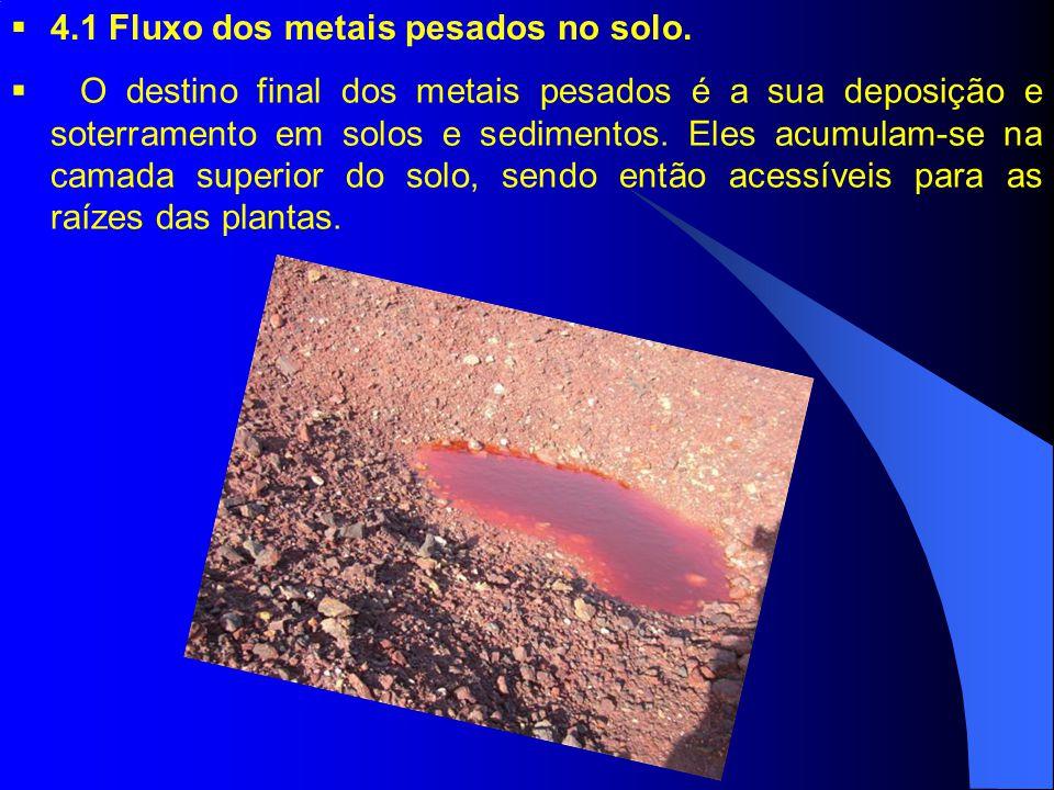 4.1 Fluxo dos metais pesados no solo.