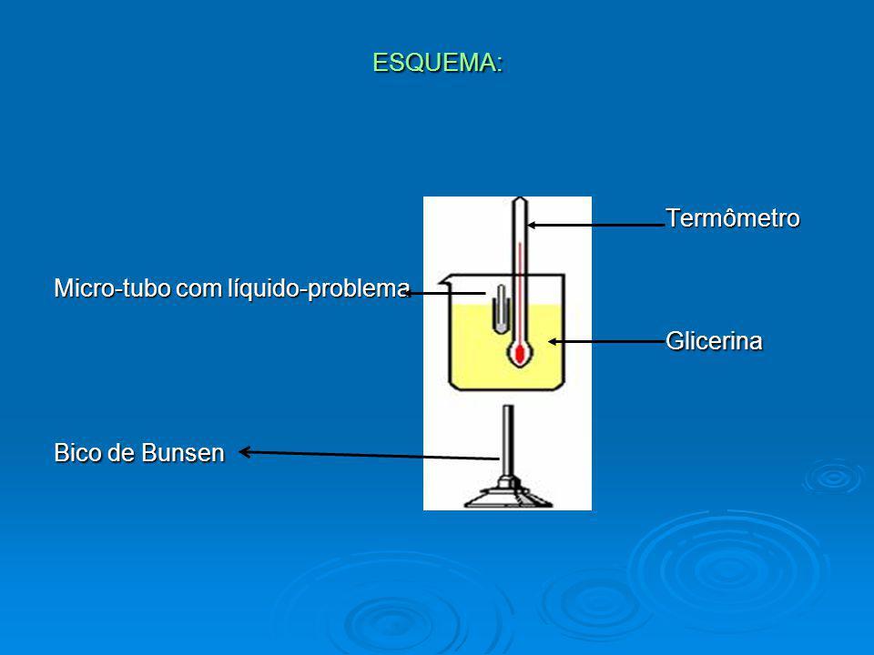 ESQUEMA: Termômetro Micro-tubo com líquido-problema Glicerina Bico de Bunsen