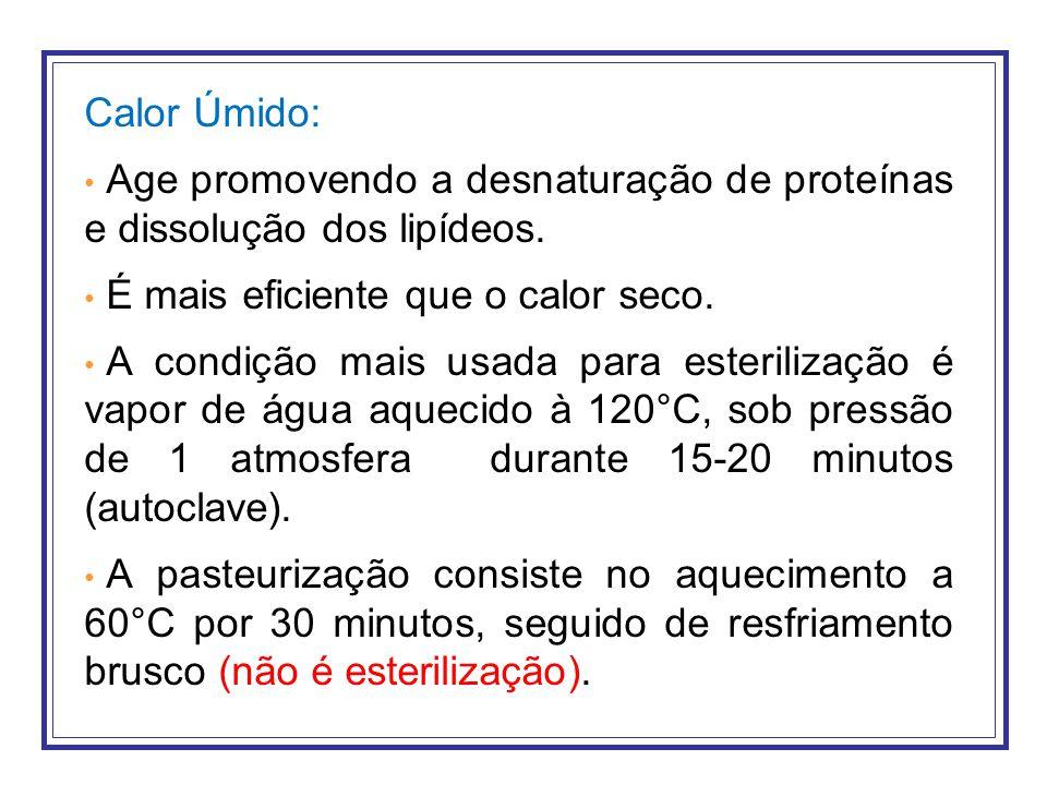 Calor Úmido: Age promovendo a desnaturação de proteínas e dissolução dos lipídeos. É mais eficiente que o calor seco.