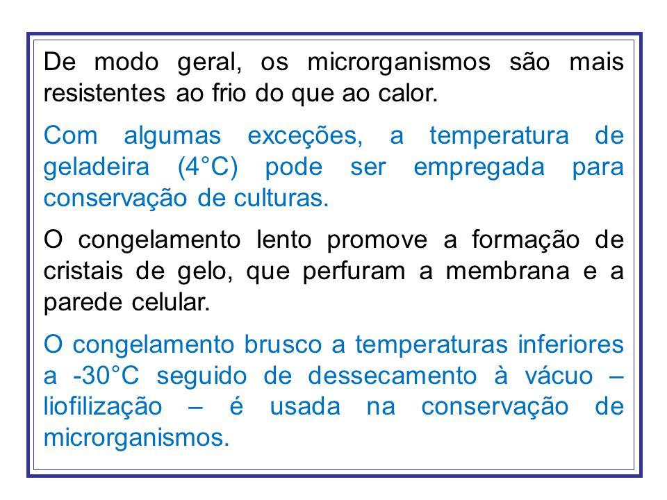 De modo geral, os microrganismos são mais resistentes ao frio do que ao calor.