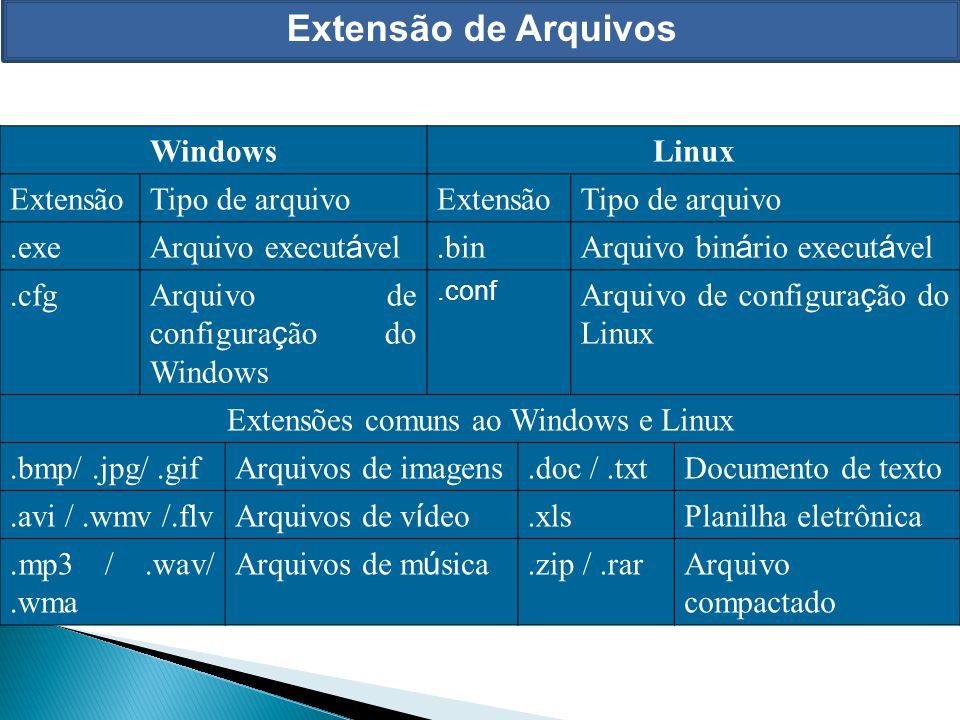 Extensões comuns ao Windows e Linux