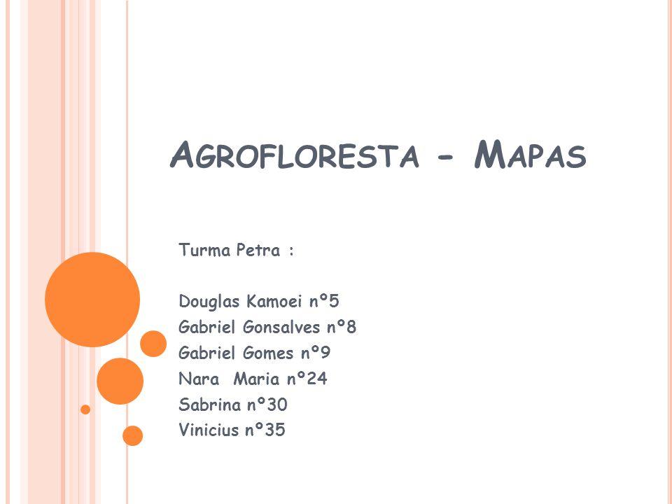 Agrofloresta - Mapas Turma Petra : Douglas Kamoei nº5