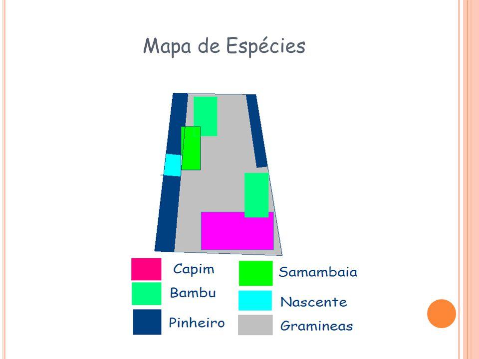 Mapa de Espécies