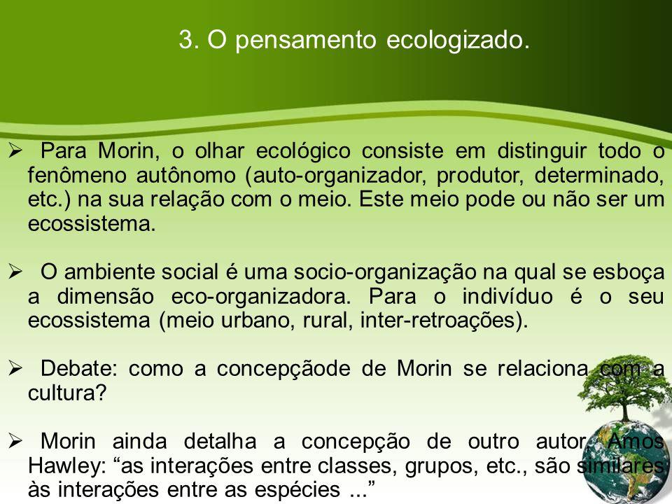 3. O pensamento ecologizado.