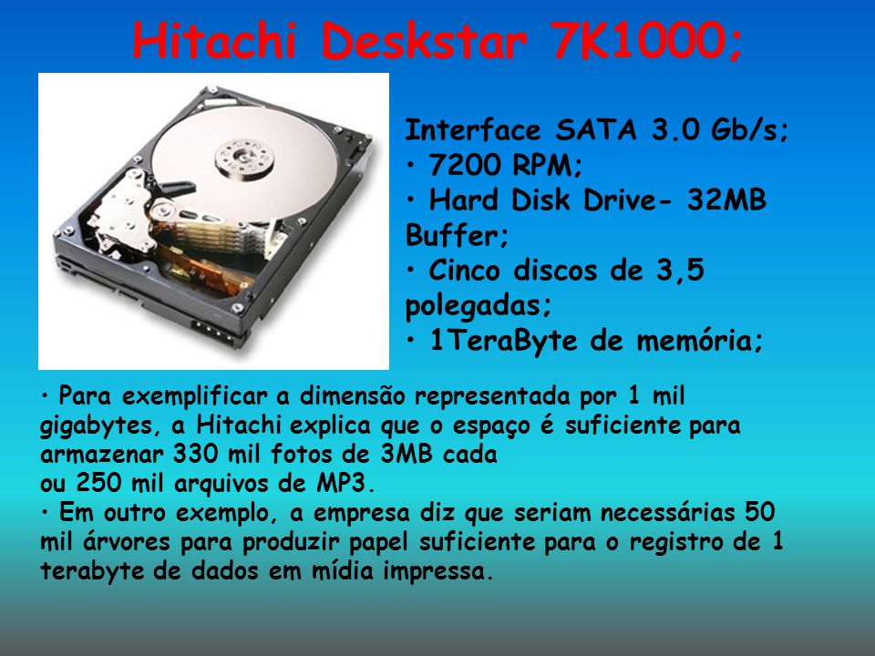 Hitachi Deskstar 7K1000; Interface SATA 3.0 Gb/s; 7200 RPM;