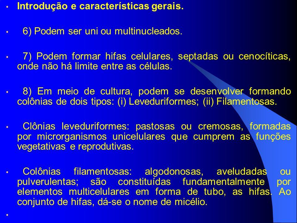 Introdução e características gerais.
