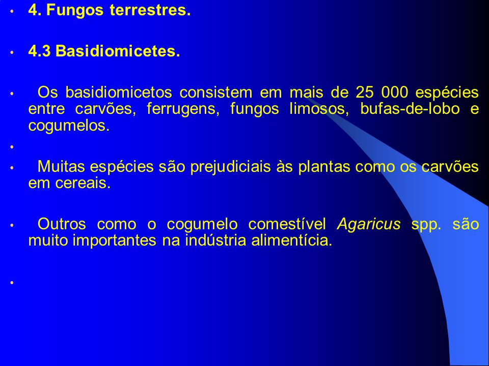 4. Fungos terrestres. 4.3 Basidiomicetes.