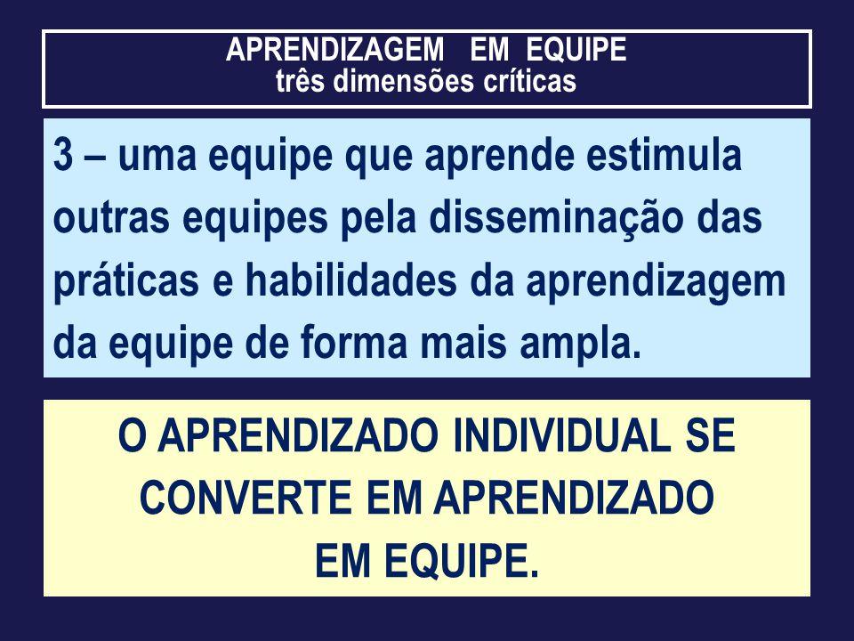 O APRENDIZADO INDIVIDUAL SE CONVERTE EM APRENDIZADO EM EQUIPE.