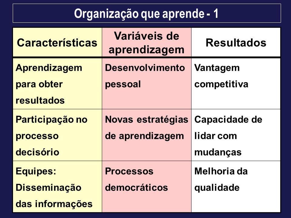 Organização que aprende - 1 Variáveis de aprendizagem