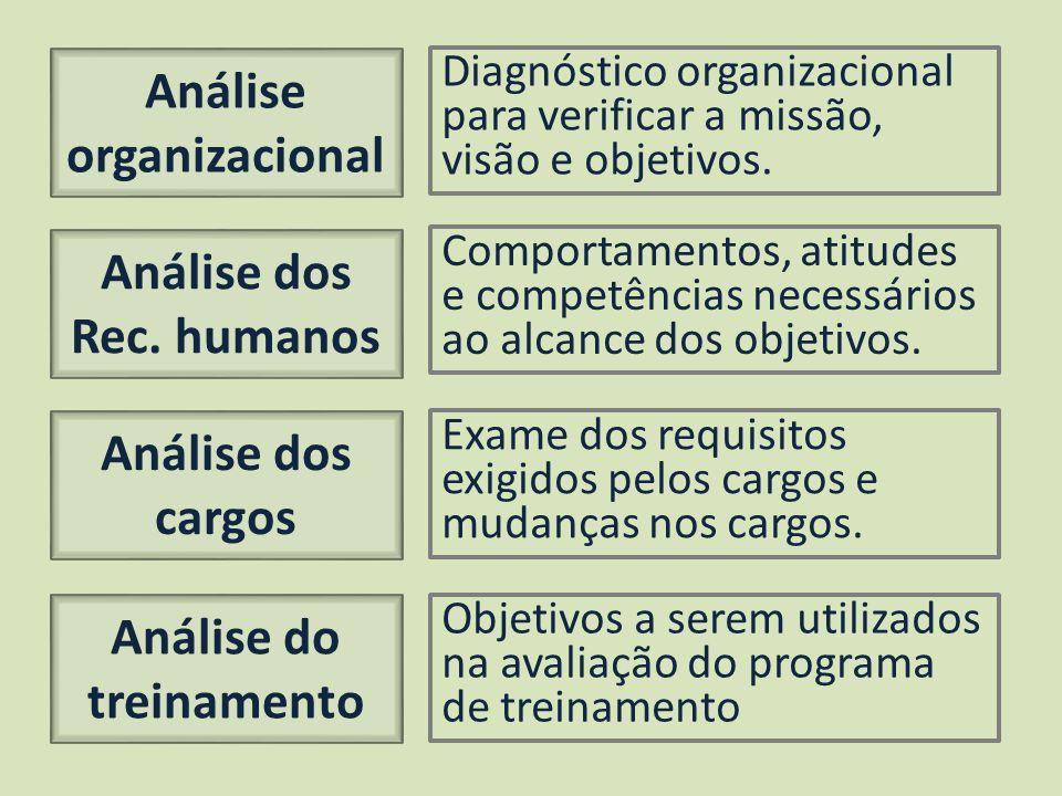 Análise organizacional Análise dos Rec. humanos Análise do treinamento