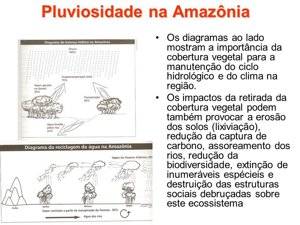 Pluviosidade na Amazônia