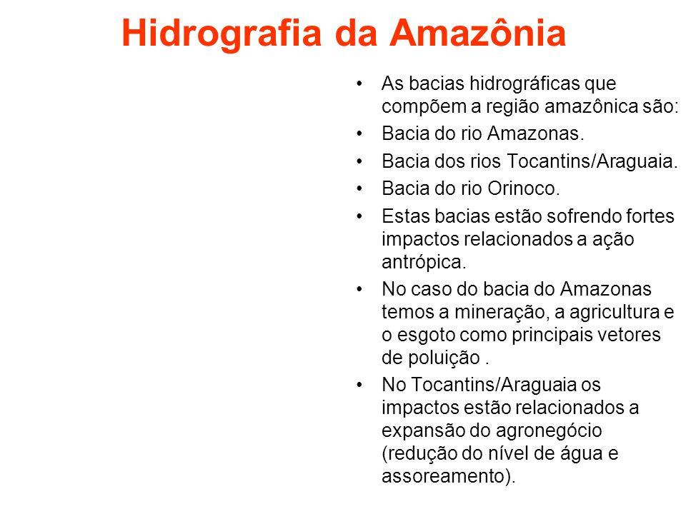 Hidrografia da Amazônia