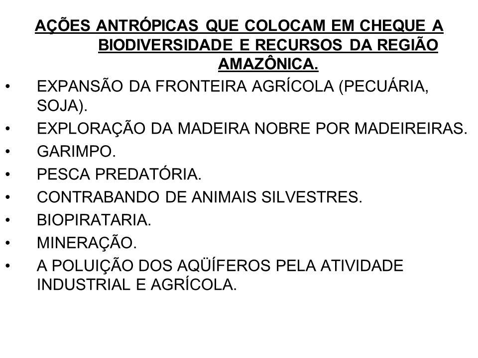 AÇÕES ANTRÓPICAS QUE COLOCAM EM CHEQUE A BIODIVERSIDADE E RECURSOS DA REGIÃO AMAZÔNICA.