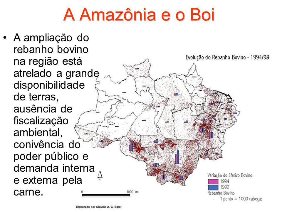 A Amazônia e o Boi