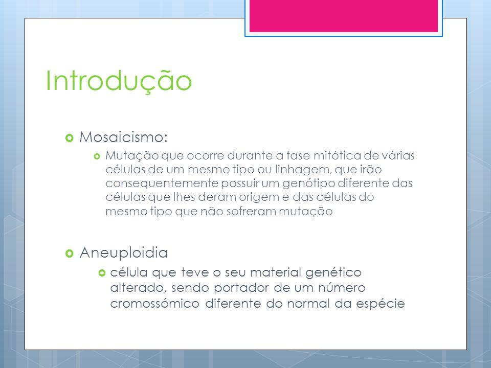 Introdução Mosaicismo: Aneuploidia