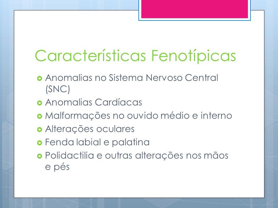 Características Fenotípicas