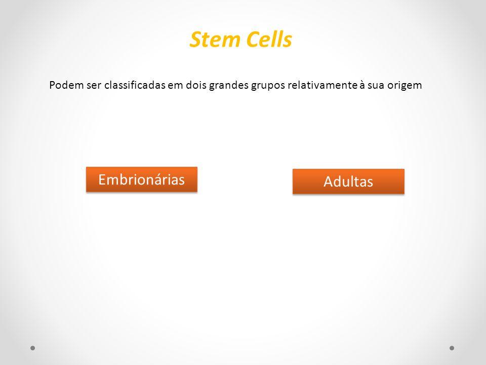 Stem Cells Embrionárias Adultas