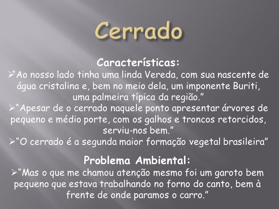 O cerrado é a segunda maior formação vegetal brasileira