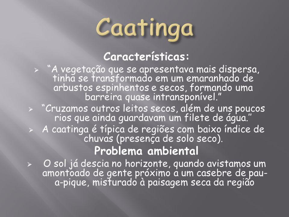 Caatinga Características: Problema ambiental