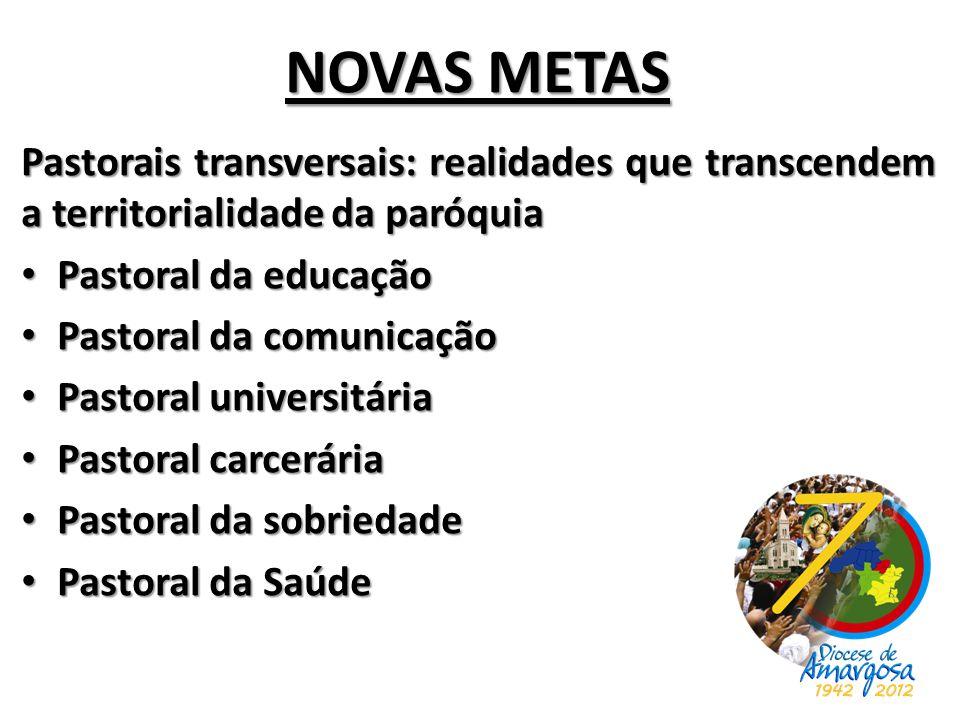 NOVAS METAS Pastorais transversais: realidades que transcendem a territorialidade da paróquia. Pastoral da educação.