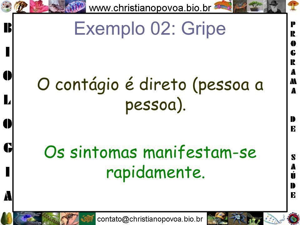 Exemplo 02: Gripe O contágio é direto (pessoa a pessoa).