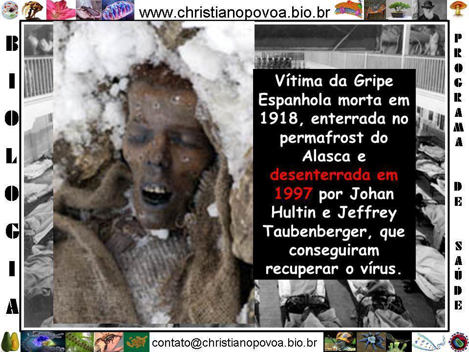 Vítima da Gripe Espanhola morta em 1918, enterrada no permafrost do Alasca e desenterrada em 1997 por Johan Hultin e Jeffrey Taubenberger, que conseguiram recuperar o vírus.