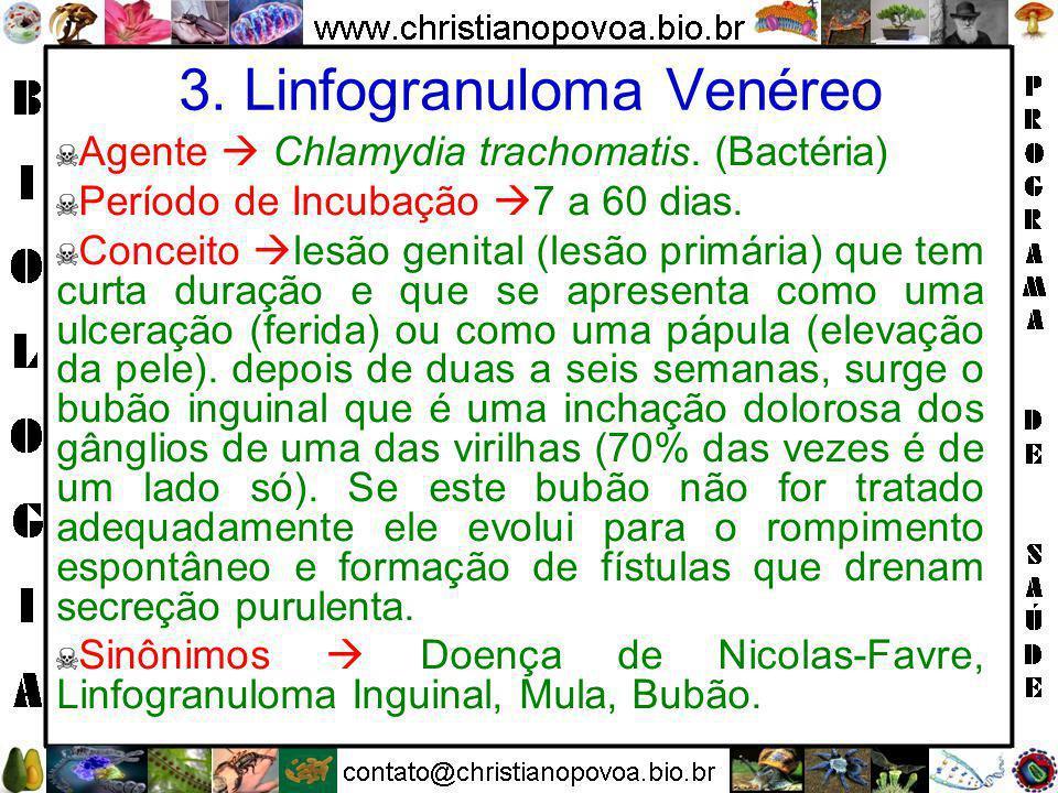 3. Linfogranuloma Venéreo