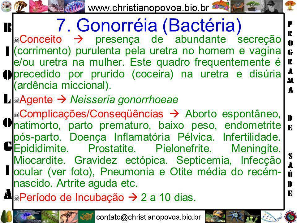 7. Gonorréia (Bactéria)