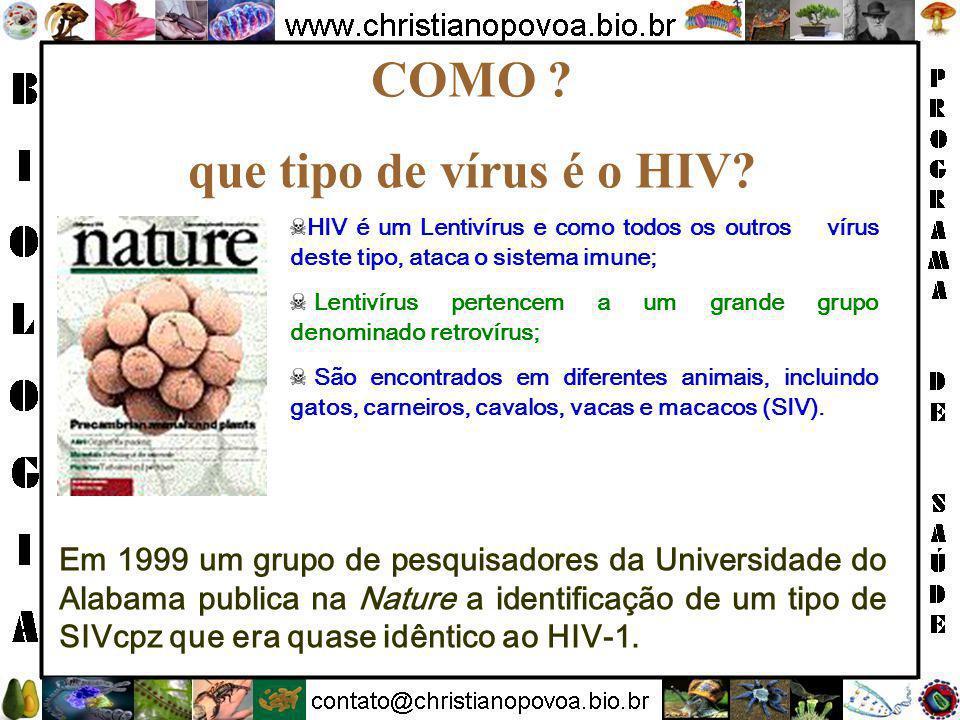 COMO que tipo de vírus é o HIV