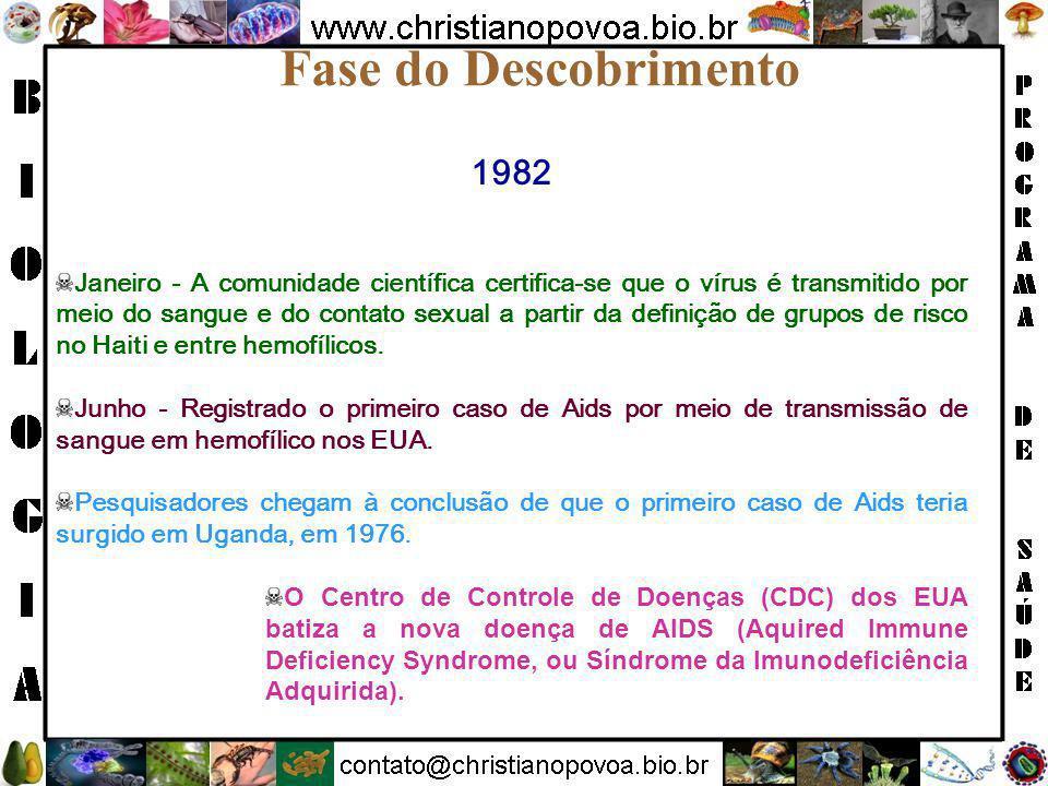Fase do Descobrimento 1982.