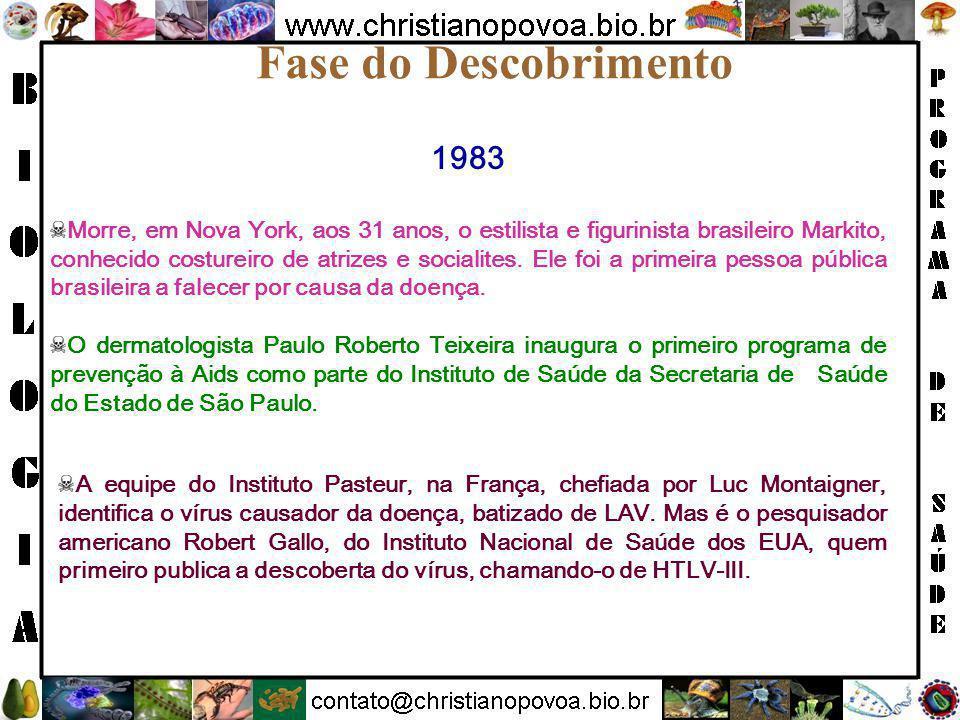 Fase do Descobrimento 1983.