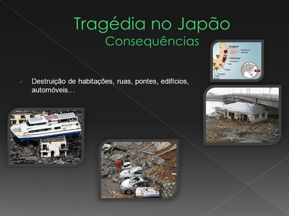 Tragédia no Japão Consequências
