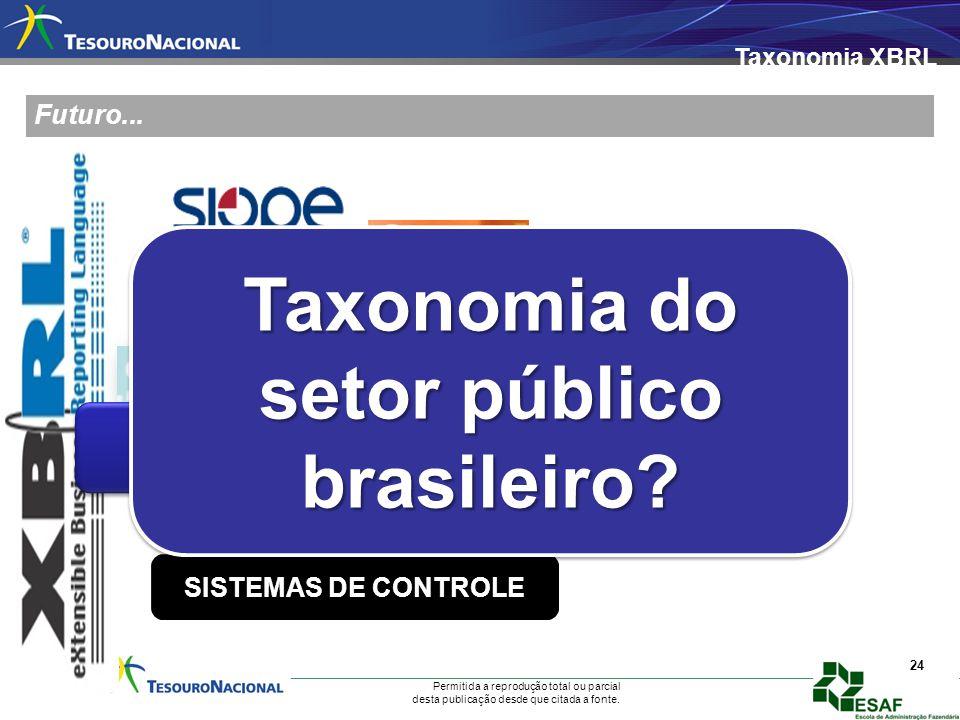 Taxonomia do setor público brasileiro