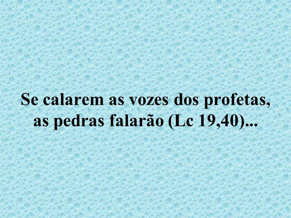 Se calarem as vozes dos profetas, as pedras falarão (Lc 19,40)...