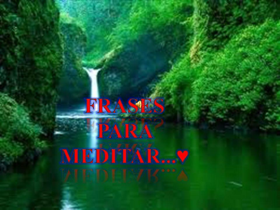 Frases Para Meditar...♥
