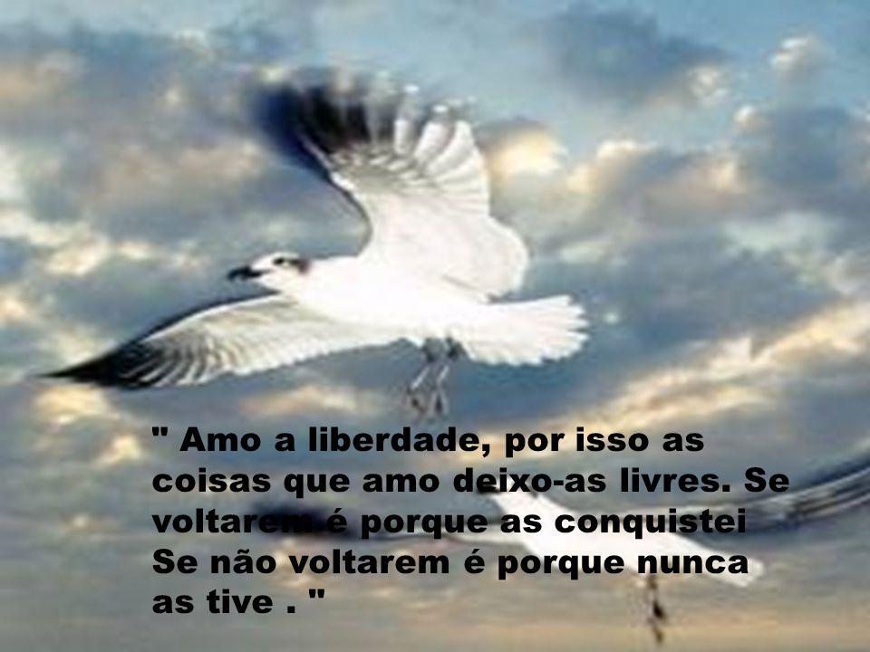 Amo a liberdade, por isso as coisas que amo deixo-as livres