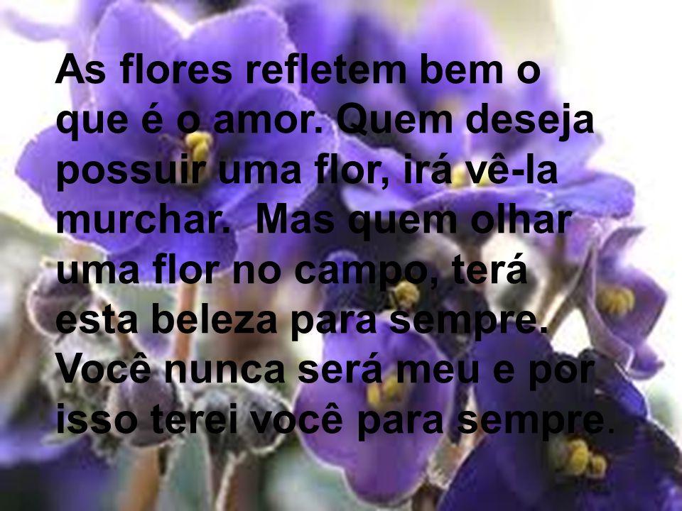 As flores refletem bem o que é o amor