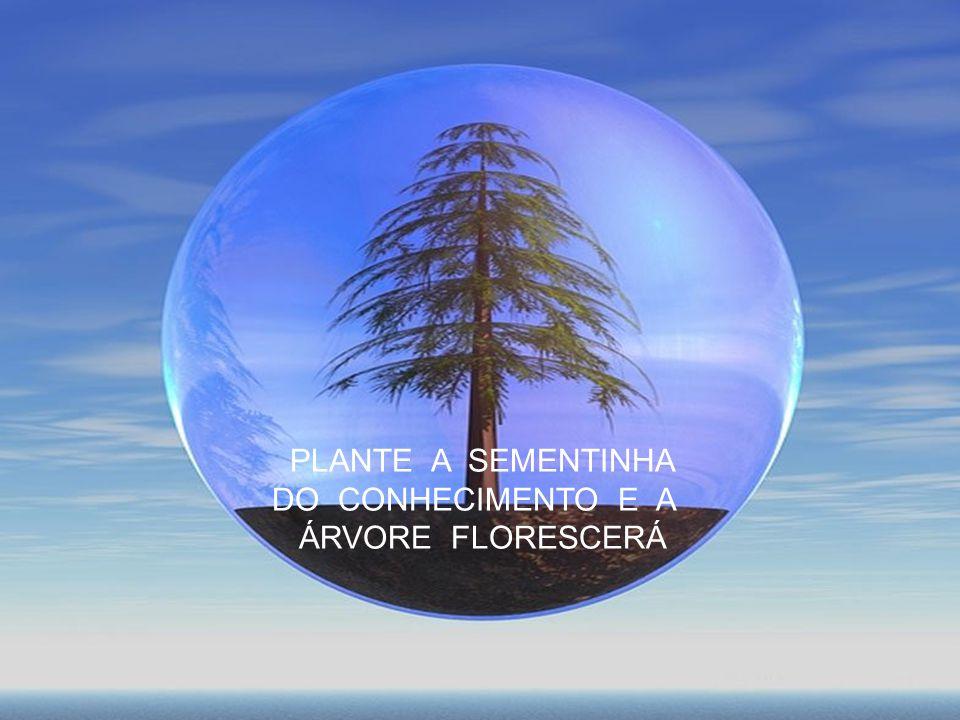 PLANTE A SEMENTINHA DO CONHECIMENTO E A ÁRVORE FLORESCERÁ